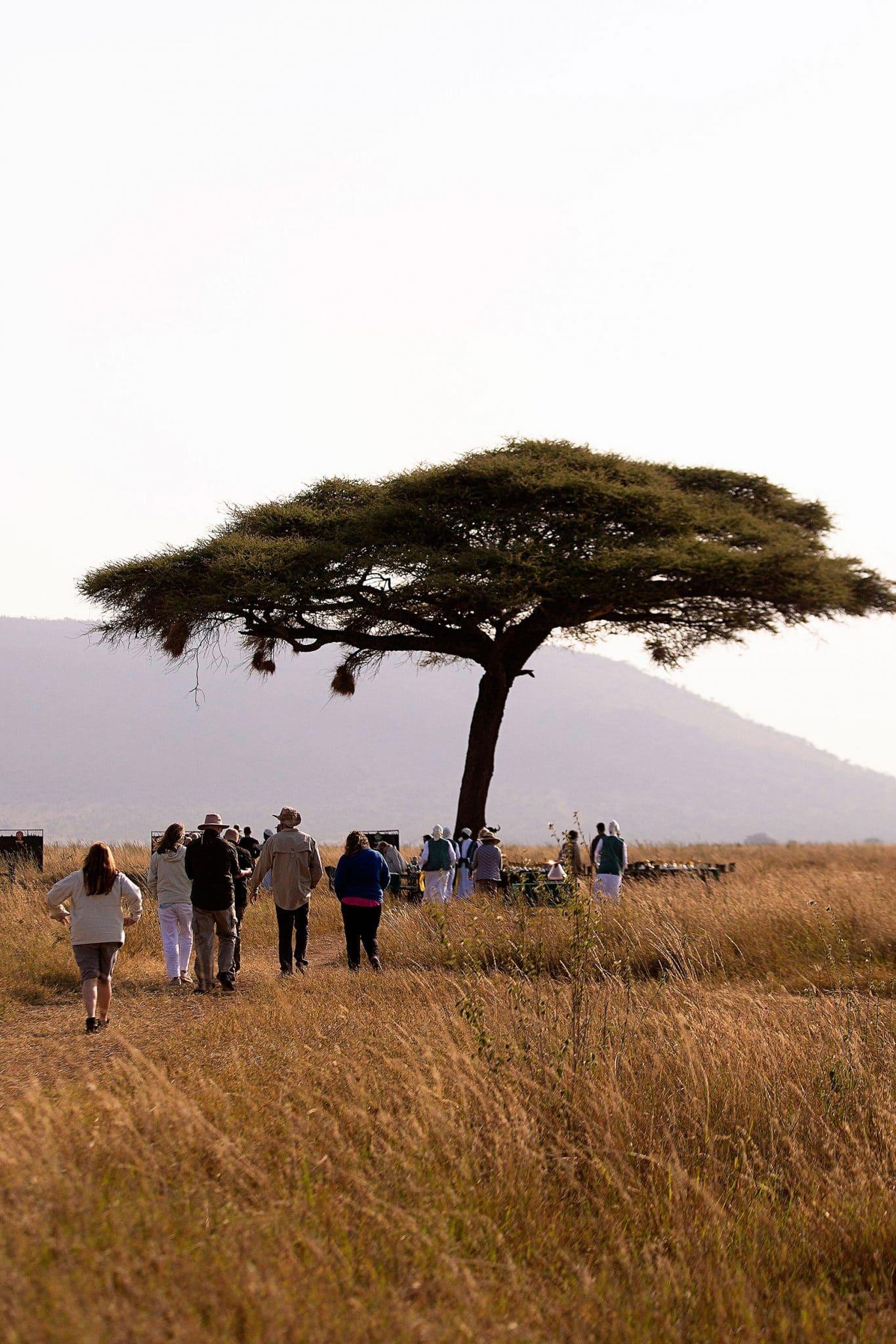 Serengeti Balloon Safari breakfast