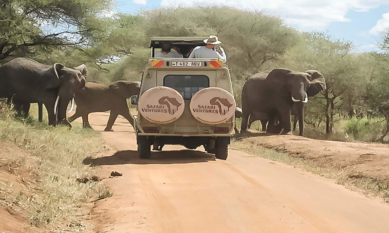 safari venture vehicle on a safari looking at elephants