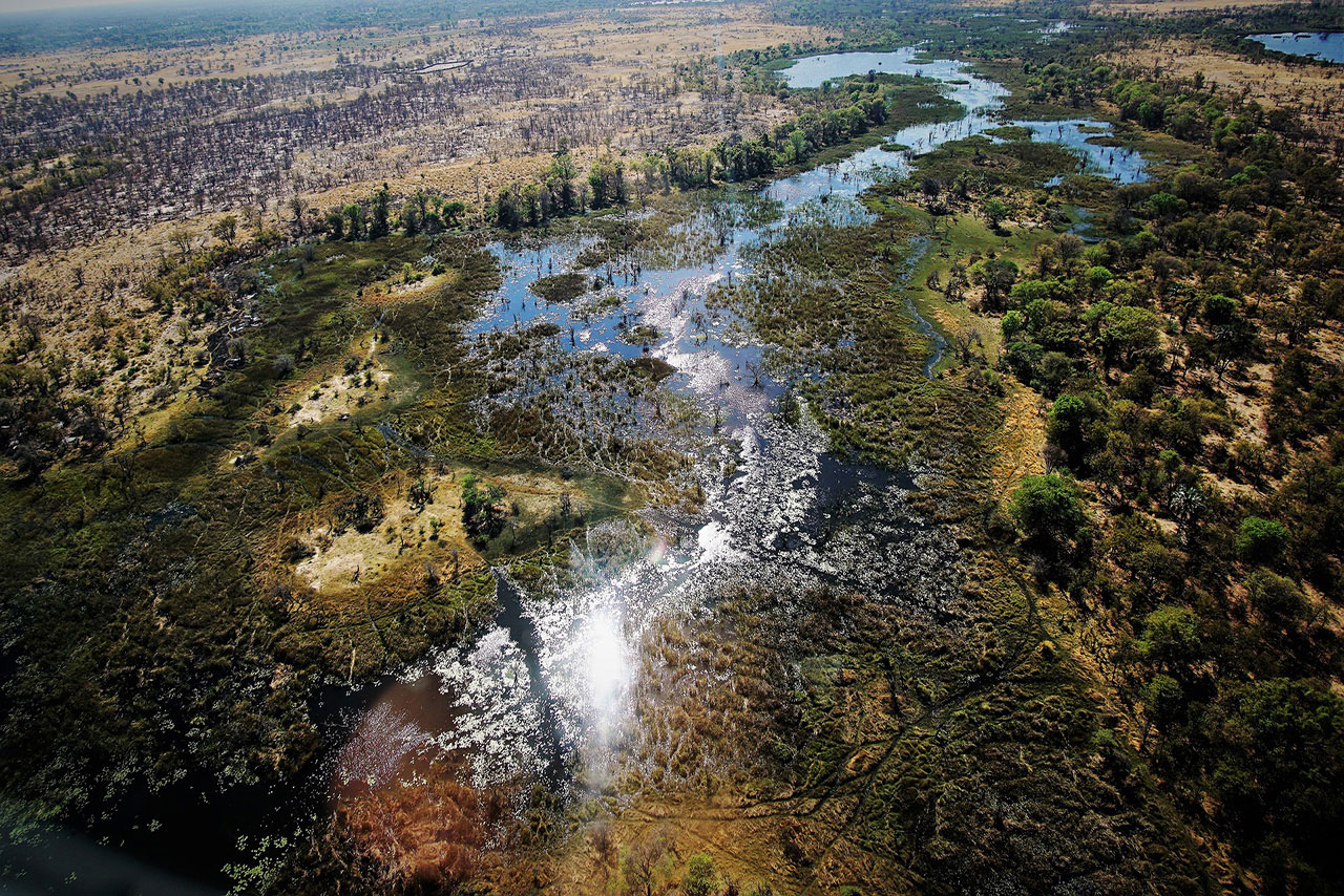 Above View Of Okavango Delta
