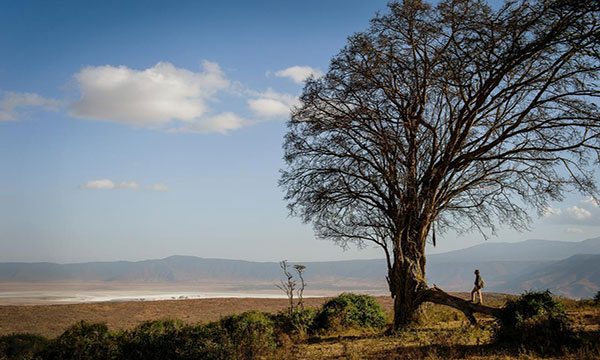 traveler looking out into the ngorongoro crater