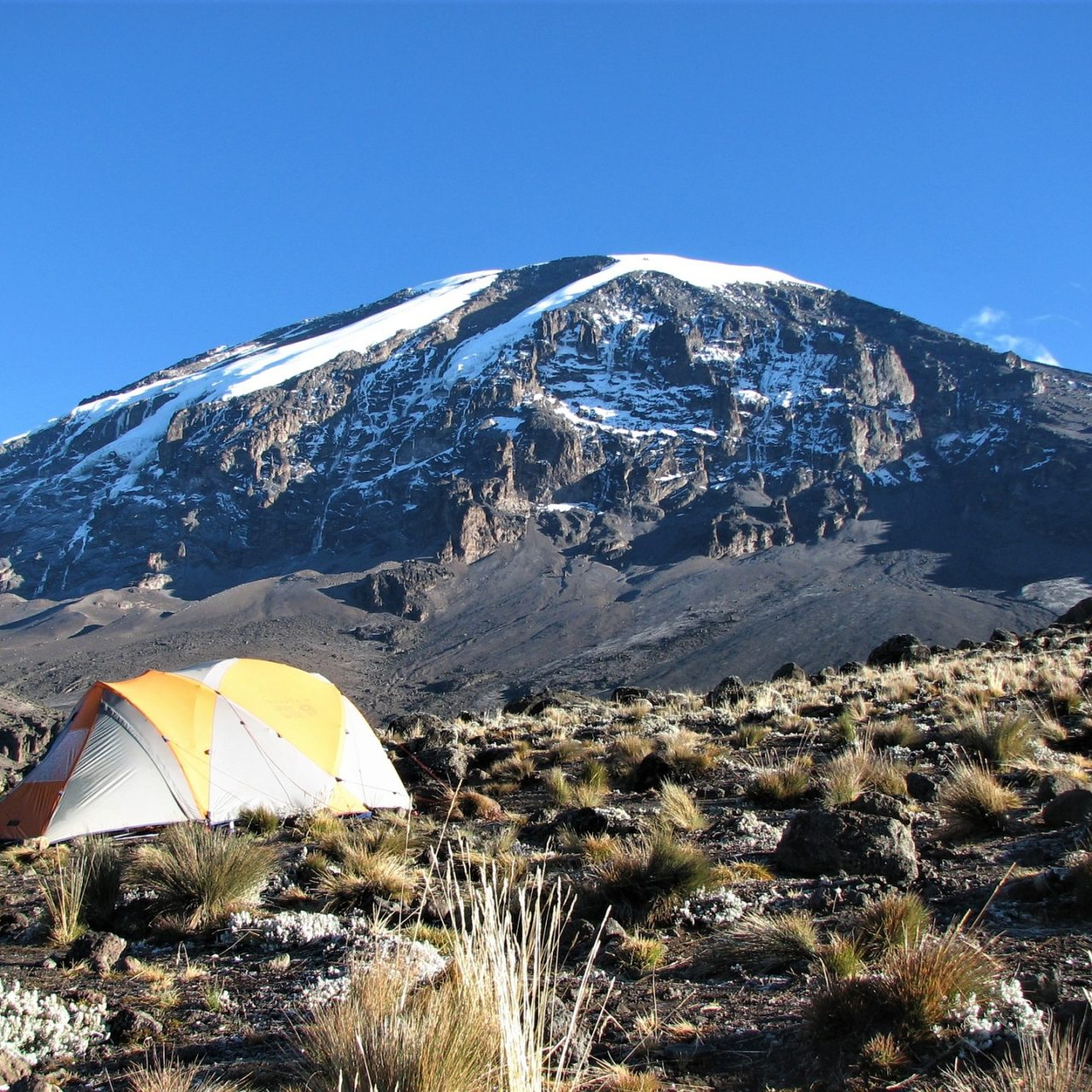 Camp site and mount Kilimanjaro