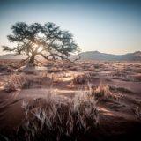 Namibia Desert Landscape