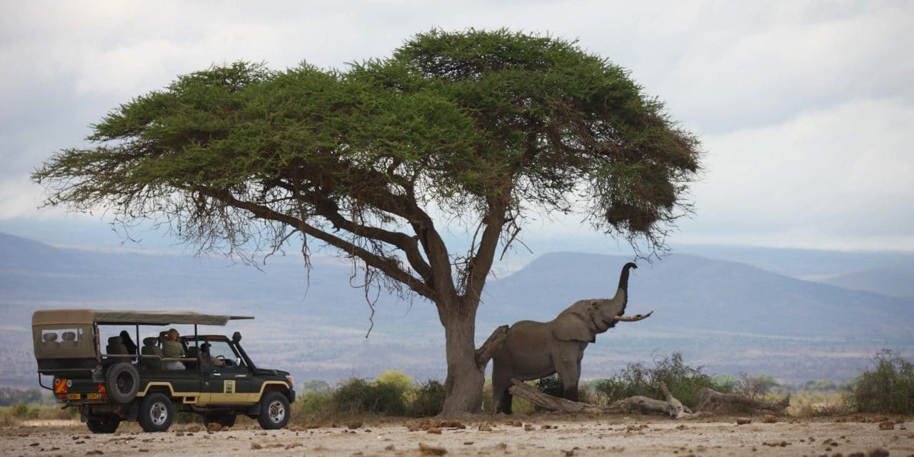 https://www.safariventures.com/wp-content/uploads/2019/02/SV3009-1280x640.jpg