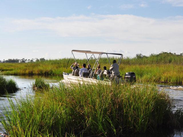 Okavango Delta and Victoria Falls Luxury Tour