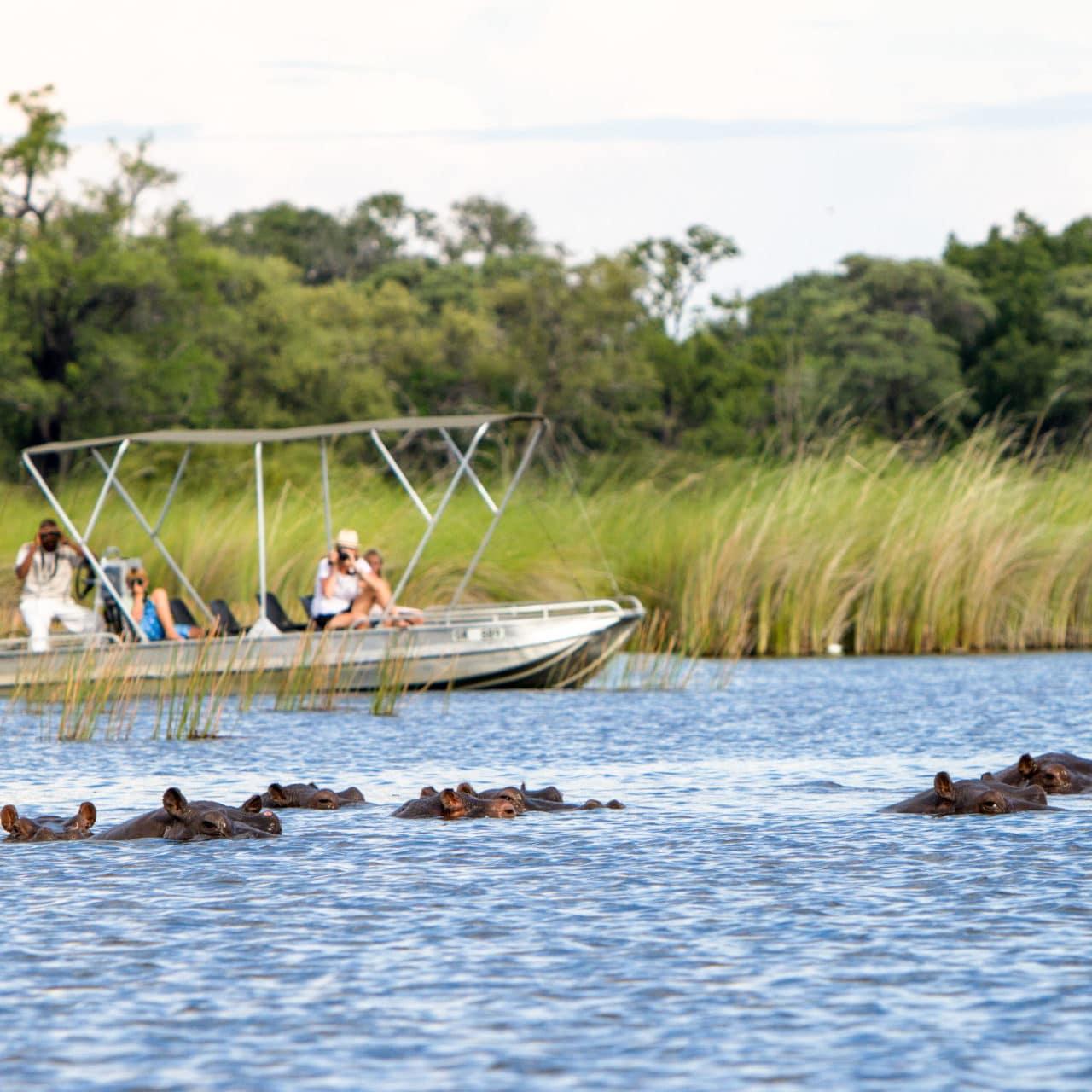 Botswana Exploration Tour