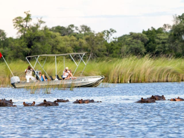 https://www.safariventures.com/wp-content/uploads/2019/02/camp-moremi-boat-safari2-640x480.jpg