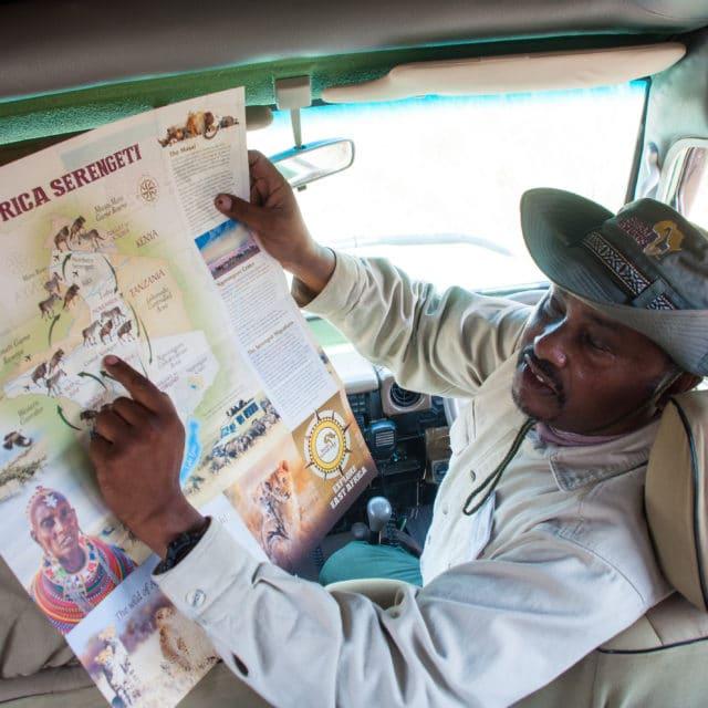 safari drive/ tour guide