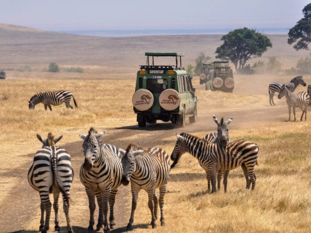 safari vehicle and zebras in the Serengeti