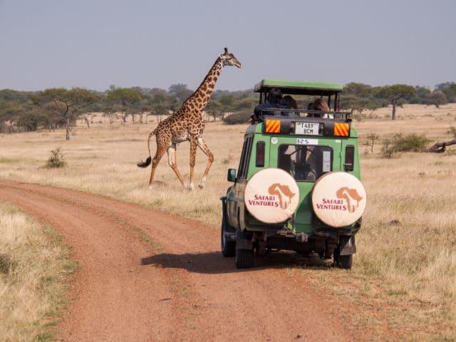 https://www.safariventures.com/wp-content/uploads/2019/09/DSC7174-640x480.jpg