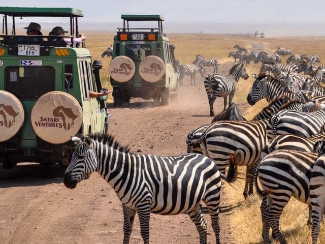 https://www.safariventures.com/wp-content/uploads/2019/11/SV3501-640x480.jpg