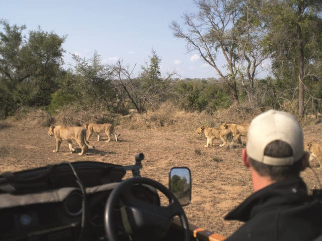 https://www.safariventures.com/wp-content/uploads/2019/11/SV5676-640x480.jpg