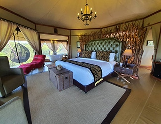 Tarangire Kuro Treetops Lodge